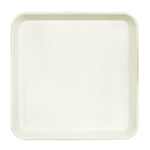 ABS plastic tray